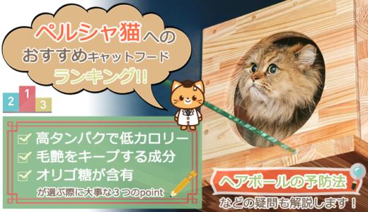 ペルシャ猫のキャットフードおすすめ人気ランキング