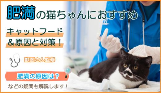 肥満の猫におすすめのキャットフード