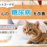 【糖尿病な猫ちゃん必見】キャットフードの選び方とおすすめランキング