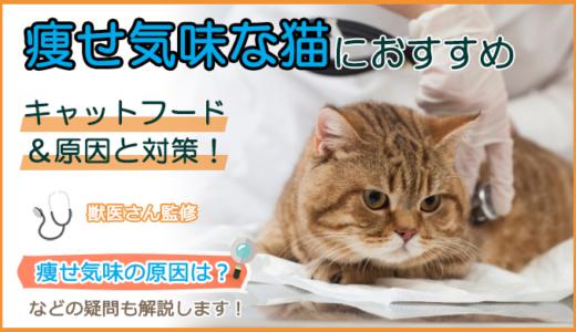 痩せ気味な猫におすすめのキャットフード
