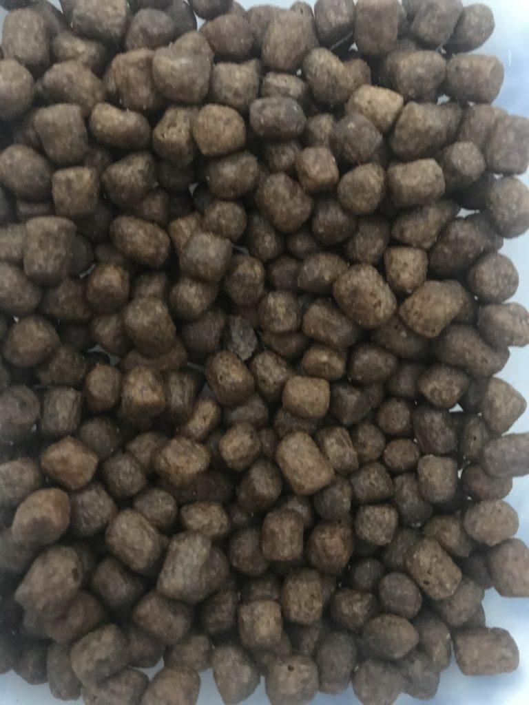 モグニャンの粒の大きさ