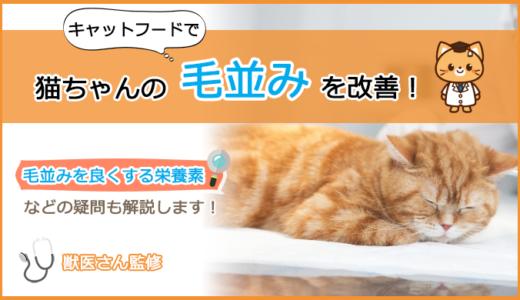 猫の毛並みを良くするキャットフードの選び方とおすすめランキング!