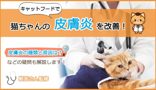 皮膚炎に悩む猫のキャットフードの選び方とおすすめランキング!
