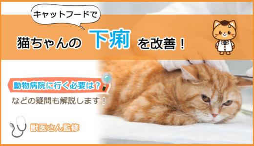 下痢な猫ちゃんのキャットフードの選び方とおすすめランキング!