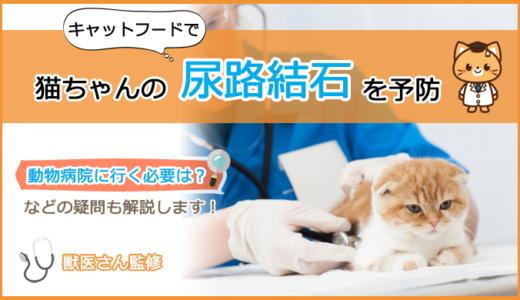 尿路結石の猫ちゃんにキャットフードの選び方とおすすめランキング!