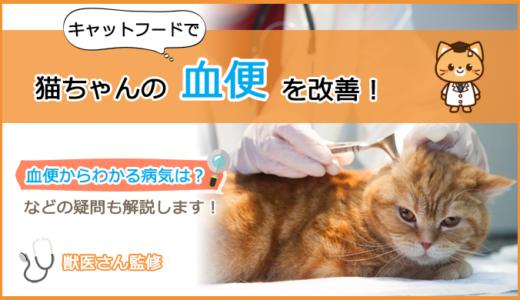 血便が出る猫ちゃんのキャットフードの選び方とおすすめランキング!