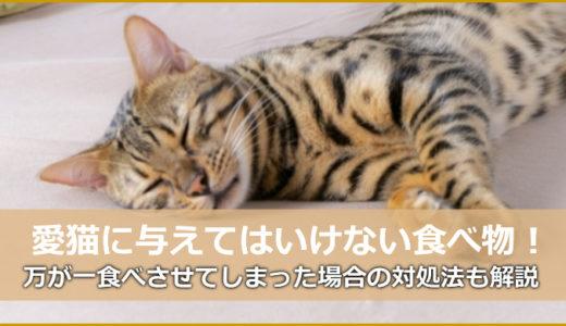 猫ちゃんに絶対に与えてはいけない食べ物8選!食べた場合の対処法!